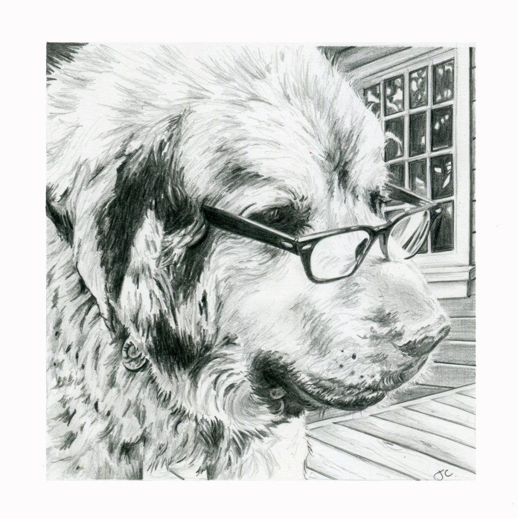 sarahs-dog001web